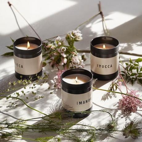 humdakin bougie fleurs séchées design danois salon maison et objet septembre 2019