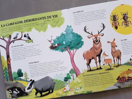 Bonjour Les animaux - L'encyclo des petiots - Fabien Ockto Lambert