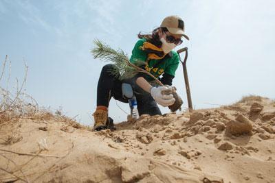 RSE : Timberland projette de planter 50 millions d'arbres d'ici 2025