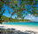 merveilleux voyage polynésie