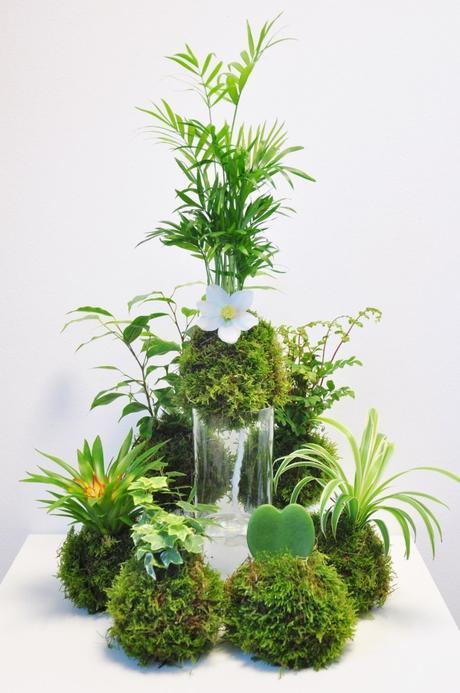 comment faire un kokedama composition floral original plantes fleurs végétal - blog déco - clem around the corner