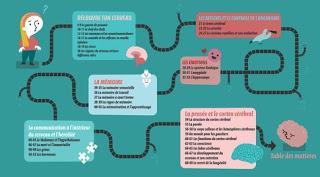 Le rêve d'Alice ou comment le cerveau fonctionne de Jerzy Vetulani