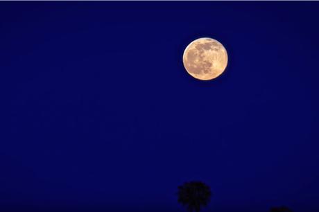 Une pierre oeil de tigre qui se recharge à la lune