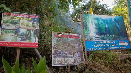 Les cascades de Sekumpul avec Gede Rajendra et Erwin Kurniawan