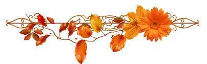 Velouté de chou-fleur, curcuma et cheddar