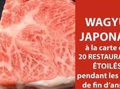 Wagyu japonais dans tout