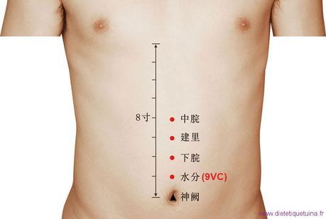 Le point Shui Fen du Vaisseau Conception (9VC)