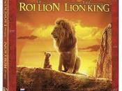 Lion vidéo depuis novembre 2019