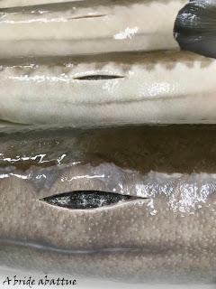 Le caviar d'Aquitaine, or noir de la France