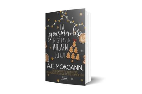 BLOGMAS 2019 – Jour 10 : Les romances de Noël de 2019 #2