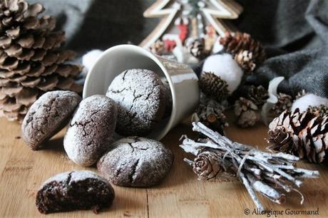 Craquelins au chocolat {sans gluten, sans lait, sans œufs }