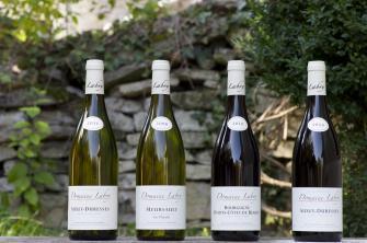 Vins Labry