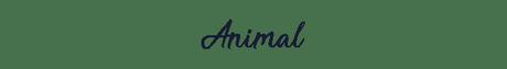 Throwback Thursday livresque #20 : Animal