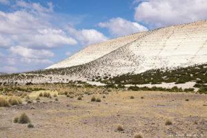 Salar de Surire désert d'Atacama: c'est beau à en pleurer!