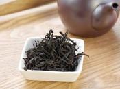 noir Sashima, flush, cultivar Sayama kaori