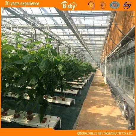 beautiful greenhouse beautiful greenhouse plans