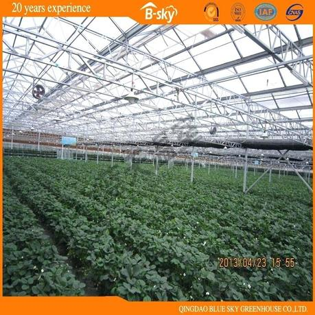 beautiful greenhouse beautiful greenhouse kits