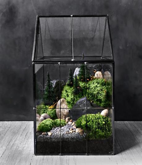 diy terrarium urban jungle décoration tutoriel slow living - blog déco - clem around the corner
