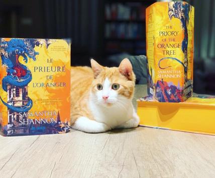 Mes 10 livres les plus marquants de 2019
