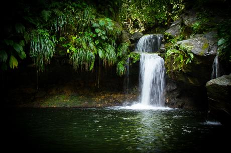 Partir en Guadeloupe : 15 très très bonnes raisons !