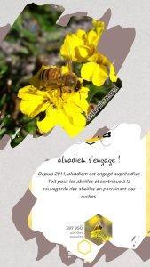 🐝 Bee U avec … Alvadiem !!!