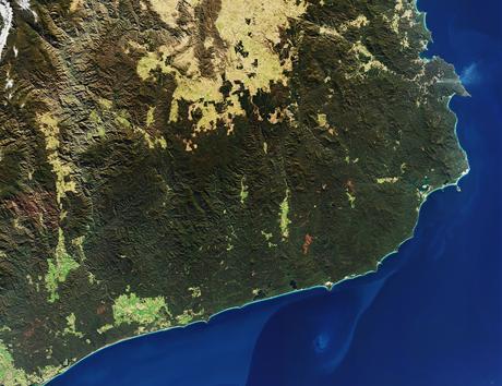 Incendies en Australie : un pays dévasté par les flammes