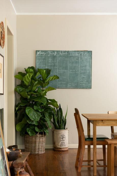 séjour texan tableau à craies vert plante parquet bois