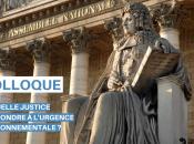 """""""Quelle justice pour répondre l'urgence environnementale intervention d'Arnaud Gossement colloque organisé députée Bérangère Abba, janvier l'Assemblée nationale"""