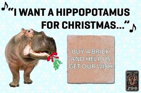 hippo gifts the zoo has unique and special gifts that are guaranteed to surprise and delight the hardest person to shop for hippo habitat brick hippo gifts and merchandise