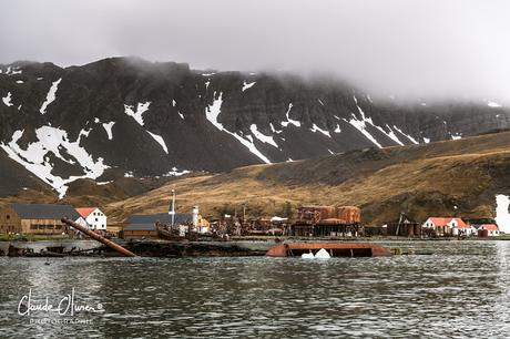 L'aventure merveilleuse en Antarctique ! Partie 3: Grytviken et les Orcades du Sud !