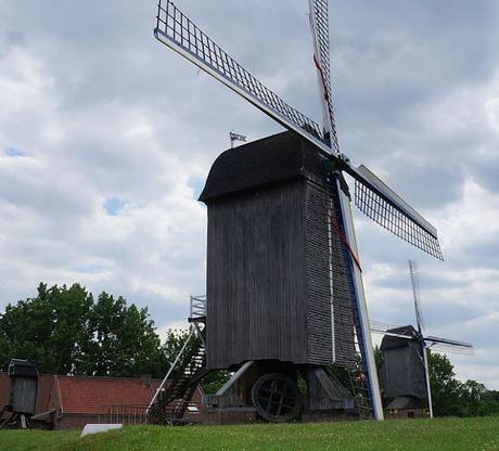 Un moulin à grains et à oléagineux, un prochain investissement pour Ecolo-bio-nature ?