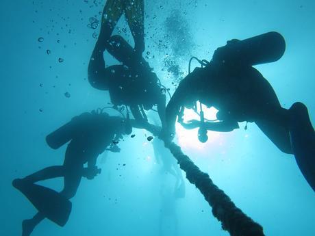 Les 3 meilleurs spots de plongée en Guadeloupe