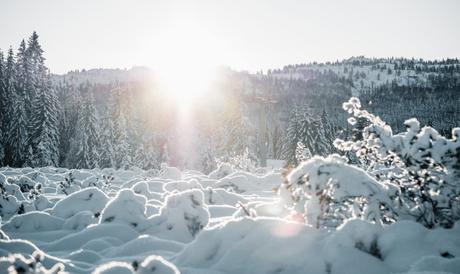 25 activités hivernales à faire absolument {To-do list à imprimer}