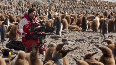 Film Documentaire Une Planète, Deux Mondes Sauvages