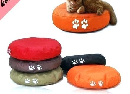 top rated dog beds top rated orthopedic dog beds for small dogs