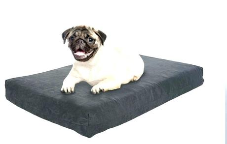 top rated dog beds best rated dog beds for older dogs