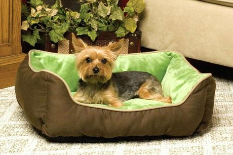 top rated dog beds best dog beds made in usa