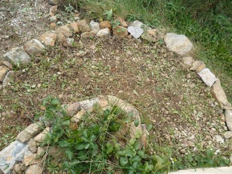 jardin,allées,herbes,printemps,travail,jardinage