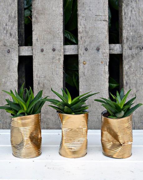 cache-pot diy récupération conserve métale doré plante - blog déco - clem around the corner