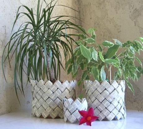 cache pot papier magazine géométrique plante verte design - blog déco - clem around the corner