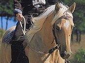 Télécharger EKKIA (Ekia) 9782711415205 Horse Riding Equipment Equitation ETHOLOGIQUE-Tome 903304, oner Size, Other (EKKIA (Ekia)) Livre Gratuit