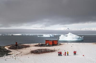 L'aventure merveilleuse en Antarctique ! Partie 4: Arrivée en Antarctique et les Shetlands du Sud !