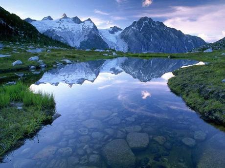 Divers - Des reflets dans l'eau