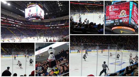 voir un match de hockey à Québec
