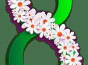 Vocabulaire Journée internationale femmes japonais