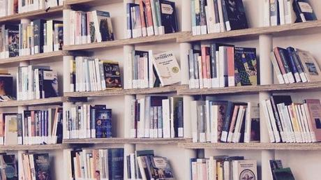 Confinement : mission « au secours, j'ai déjà lu tous les livres de ma bibliothèque 3 fois, je n'ai plus rien à lire !! »