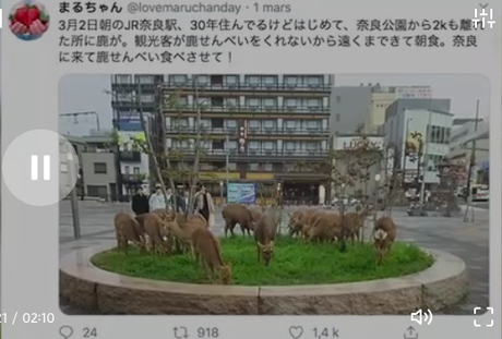 Nouvelles du monde. Vu du Japon.