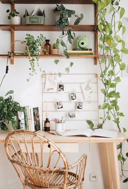 bureau-avec-plantes-suspendues