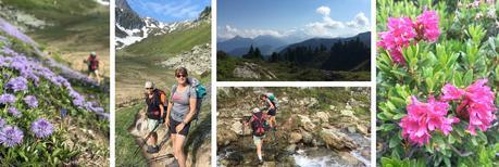 TOUR DU BEAUFORTAIN : Chalet de l'Alpage - Queige (J6)