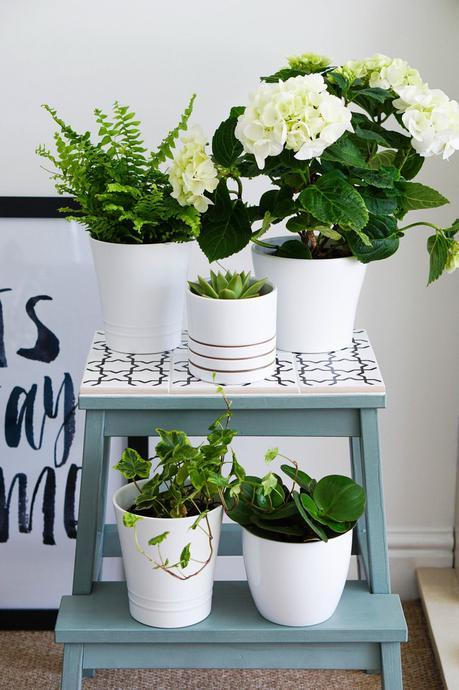 marche-pied ikea hack étagère pour plante carrelage blanc bois bleu pastel - blog déco - clem around the corner